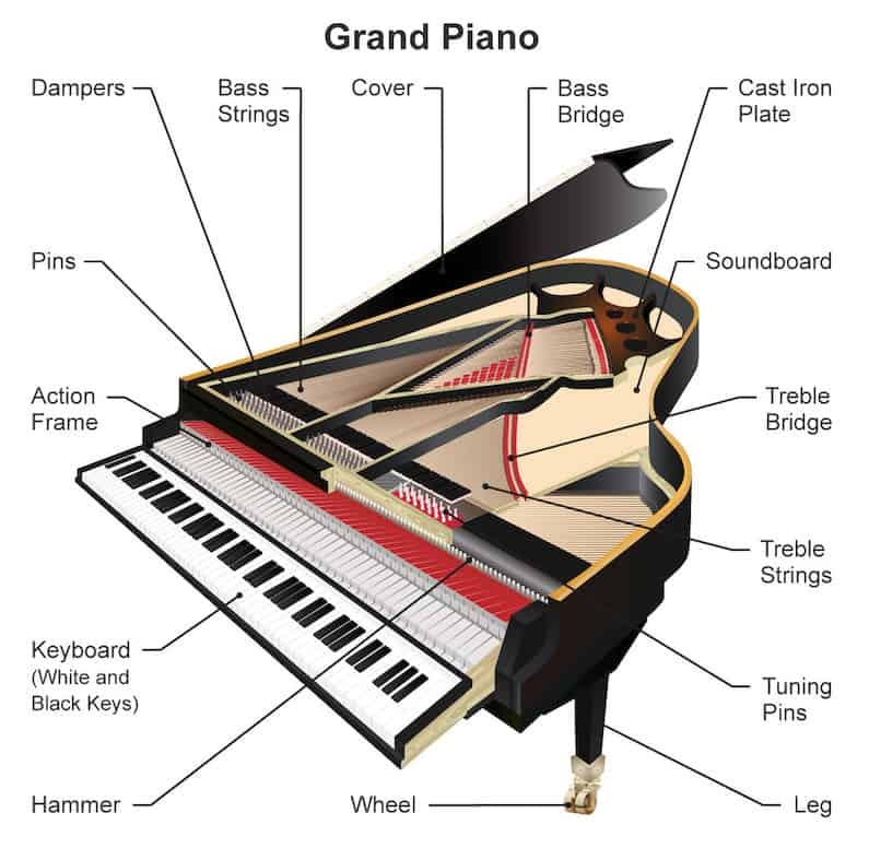 Enjoyable Parts Of A Piano Grand And Upright Piano Diagrams Dandim Mohammedshrine Wiring Diagrams Dandimmohammedshrineorg